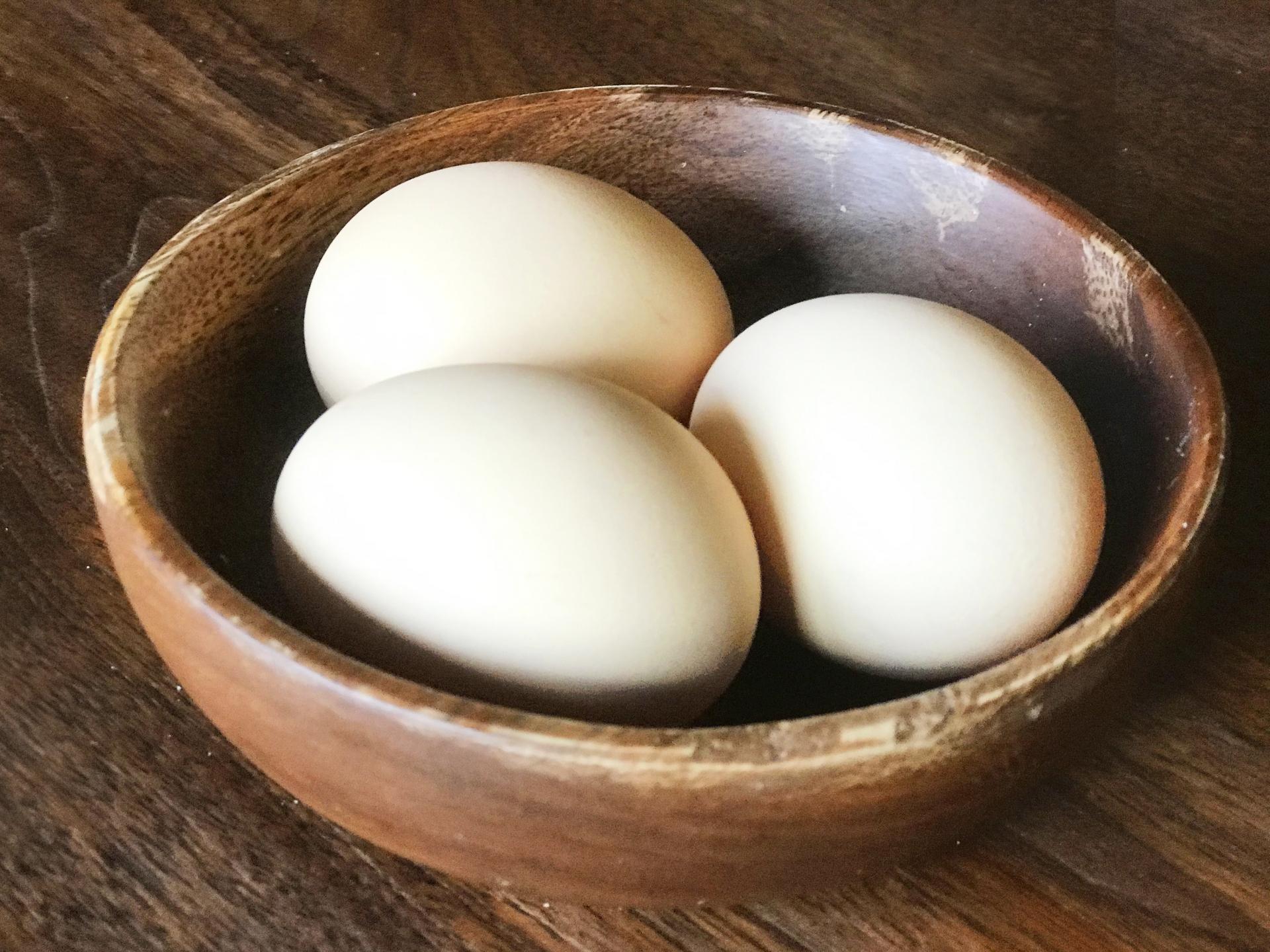 ゆで卵に使えるたまごは賞味期限後いつまで?湯で時間は?