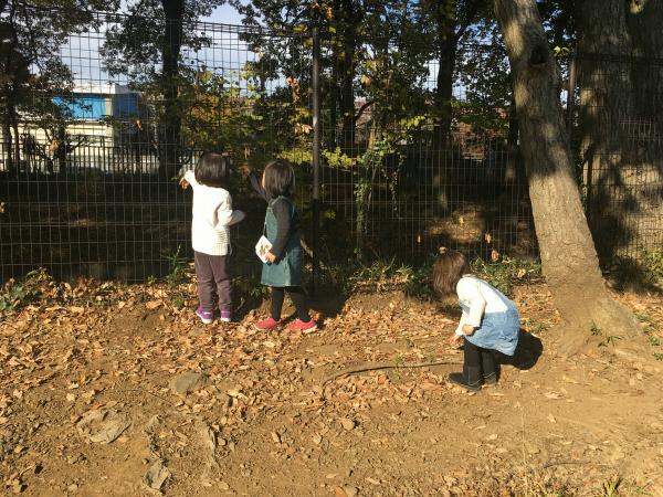 紅葉の公園へお出かけ(W5歳児&2歳児編)