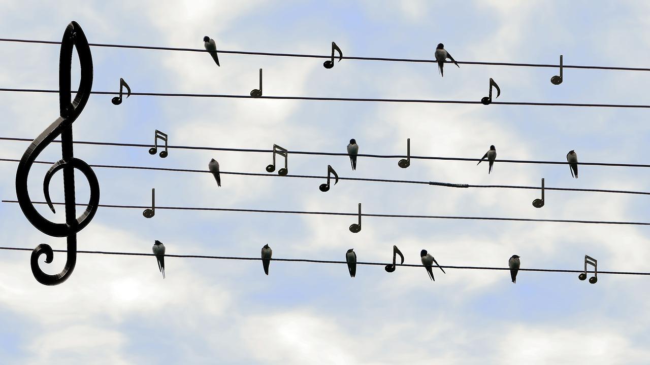 音楽のある生活