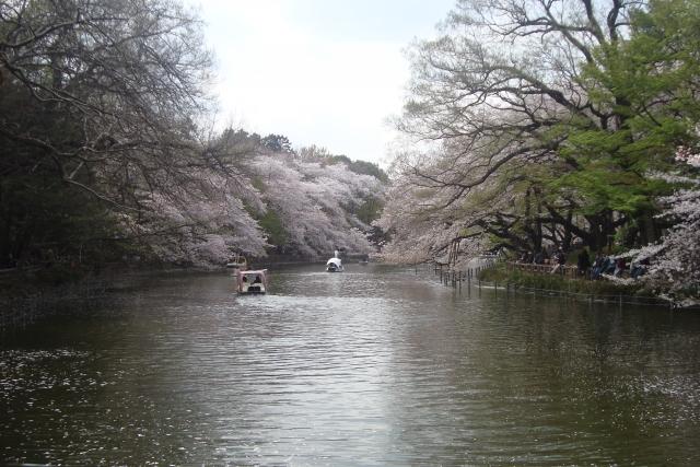 2歳と行く吉祥寺、井の頭公園