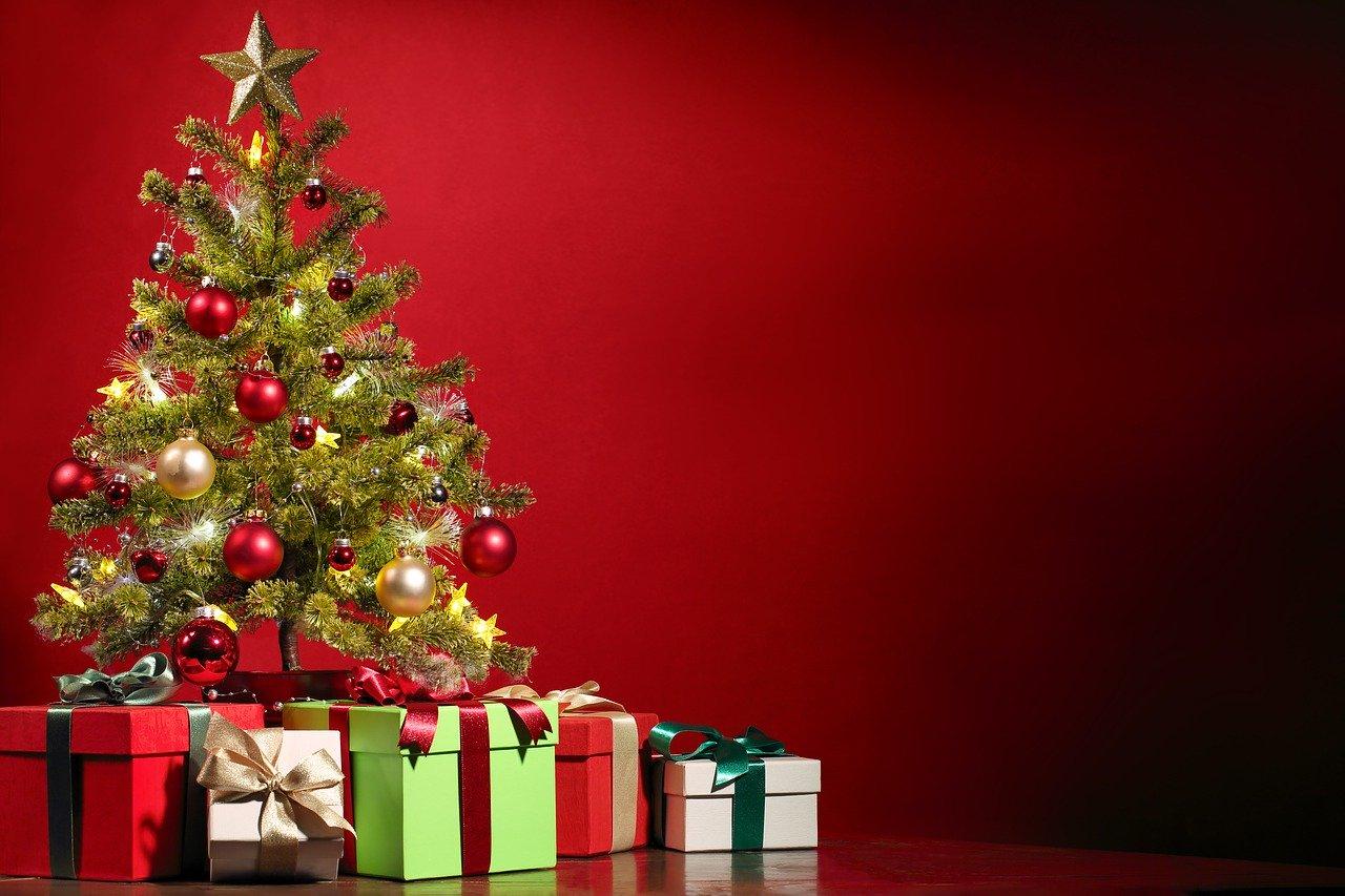 5歳女子のクリスマス